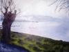 Bracciano - albero 1999 (40 x 50)