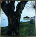 Lago e albero, 1996 (90x90)
